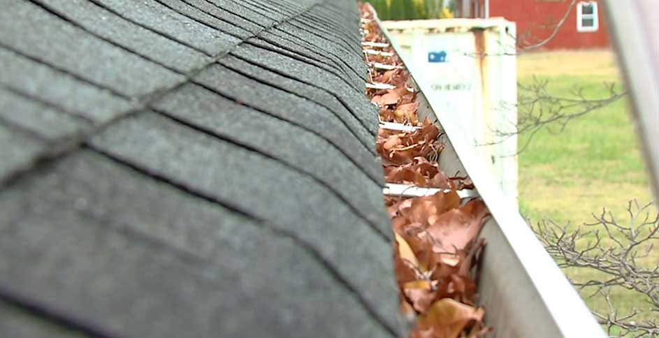 Clogged gutters will trap dirt and debris in your home. Ick!