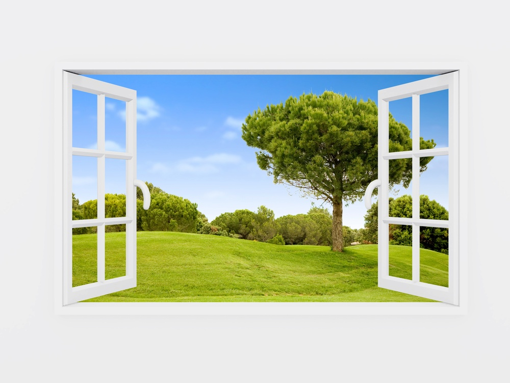 Beautiful view over a window of a green field with a blue sky.jpeg